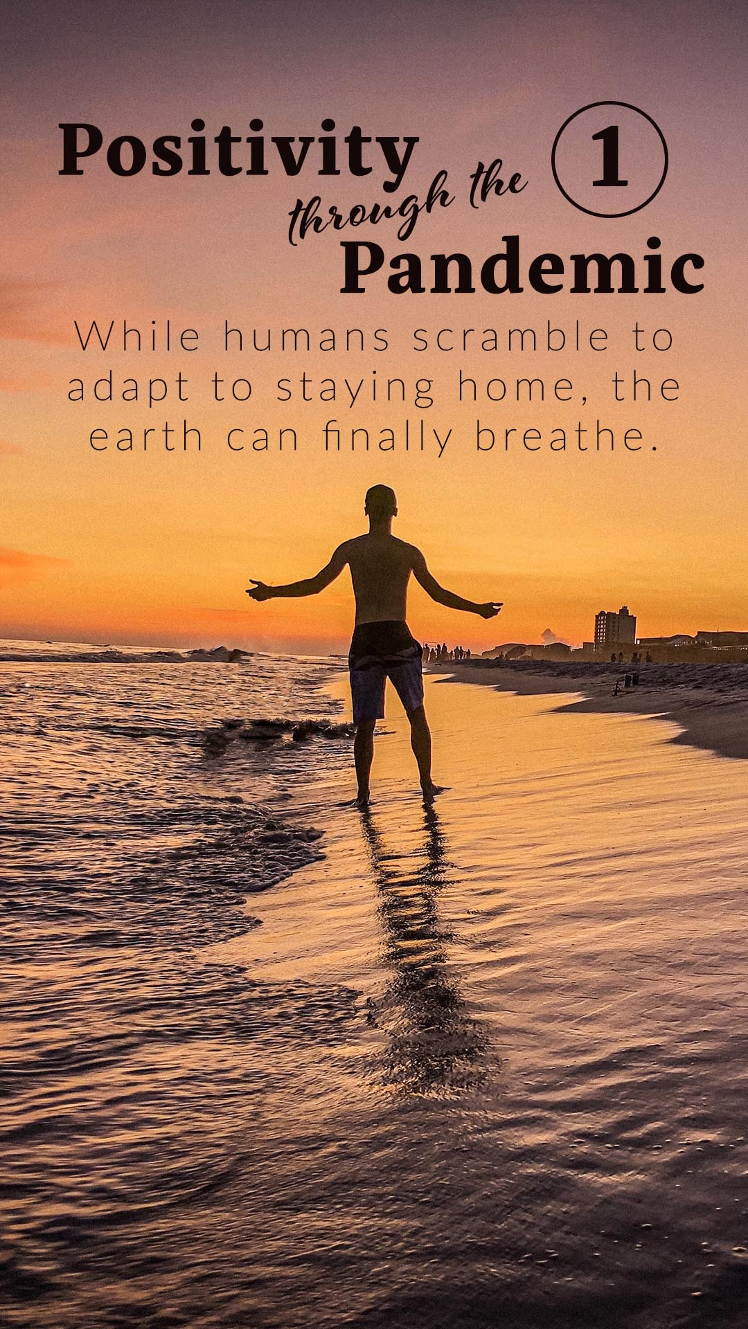 Positivity through the Pandemic #1: While humans scramble to adapt to staying home, the earth can finally breathe