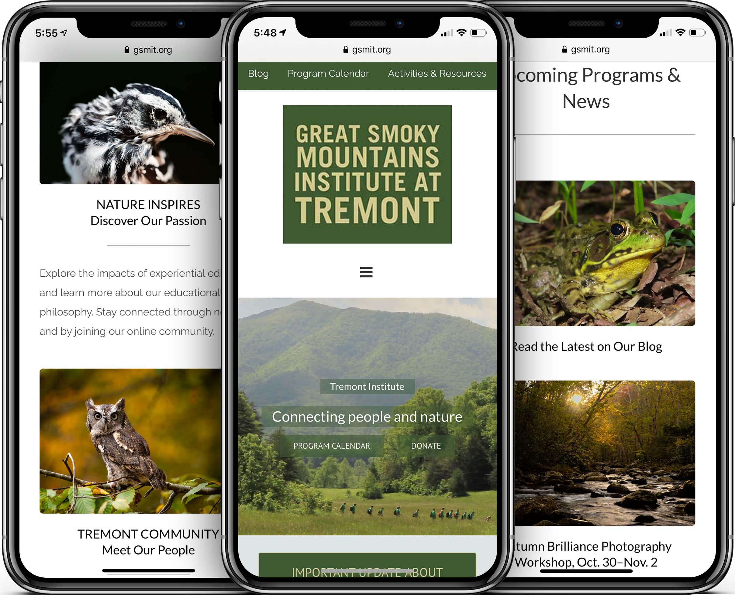 GSMIT Mobile-Friendly Web Design